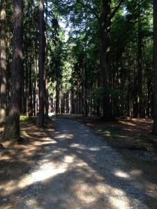Údolí Doubravy (1)