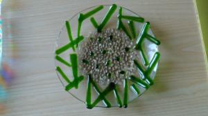 miska zelená